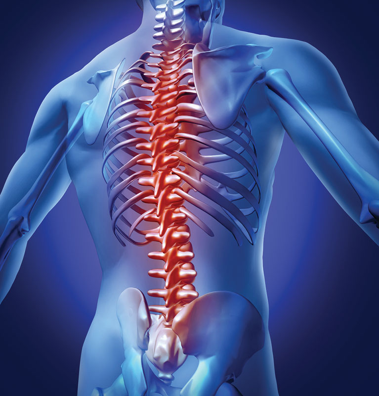 Back Pain Chiropractor Northern Beaches Sydney